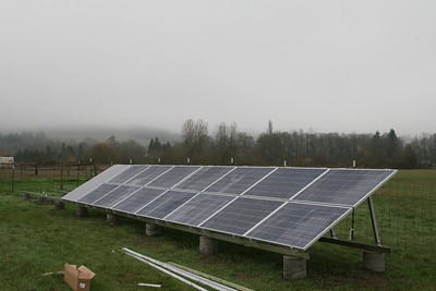 Most solar panels installed - Missdee's French Alpine Dairy Goats